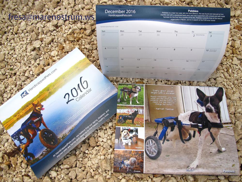 Handicapped Pets Calendar